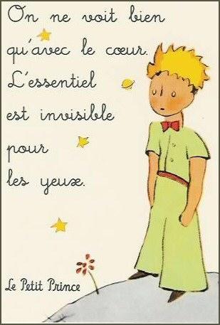 Petit-prince1